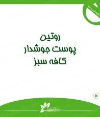 روتین پوست به انجام سه مرحله برای مراقبت از پوست گفته می شود: پاکسازی (شستشوی پوست) ، بالانس کردن (استفاده از تونر) ، هیدراته کردن (استفاده از مرطوب کننده)