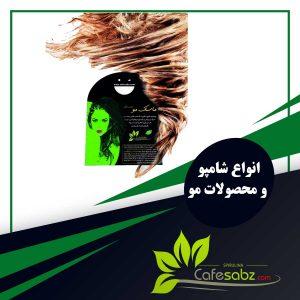 shampoo-Hair care categories